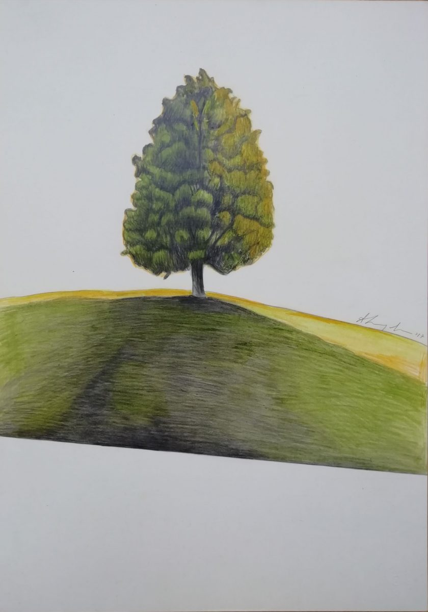 KROMA Human Trees Amalia Stavroulaki